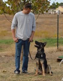 Dog Kennels Stockton Ca